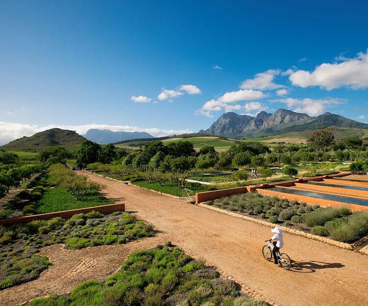 Babylonstoren Klapmuts Cape Town: Shoot My House Farm Location