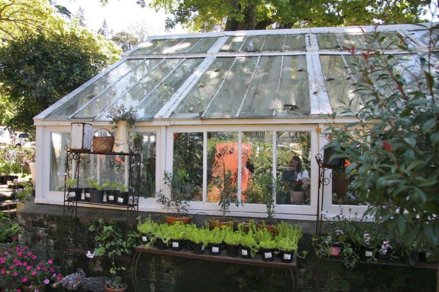 Greenhouse: Shoot My House Commercial Gardens Location Newlands Cape Town