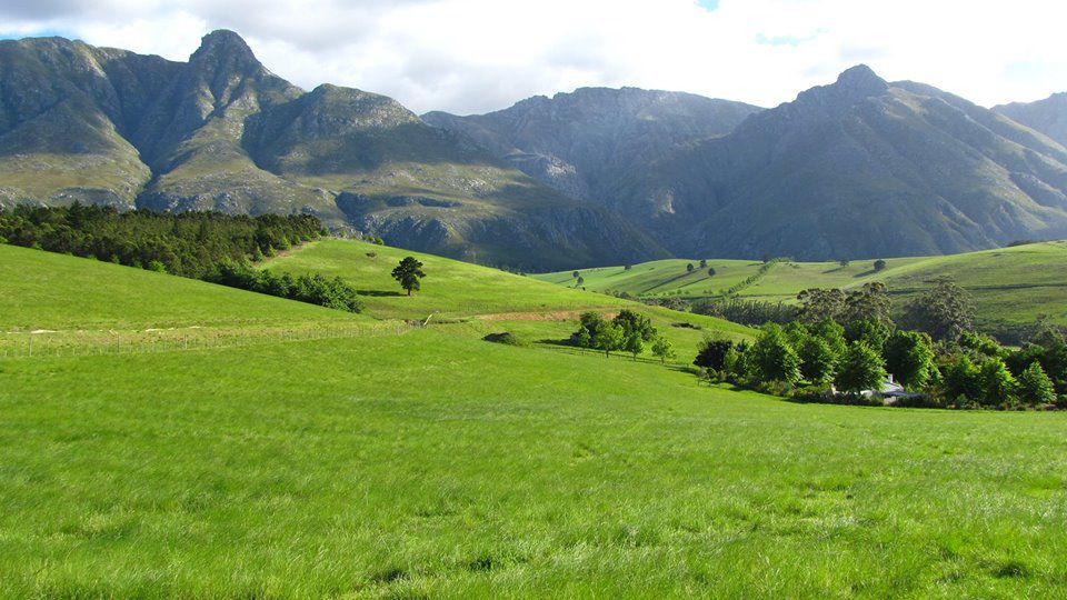Eenuurkop Farm: Shoot My House Farms Gardens Location Swellendam Western Cape