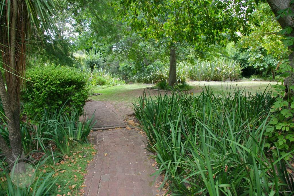Little Stream: Shoot My House Farms Gardens Location Constantia Cape Town