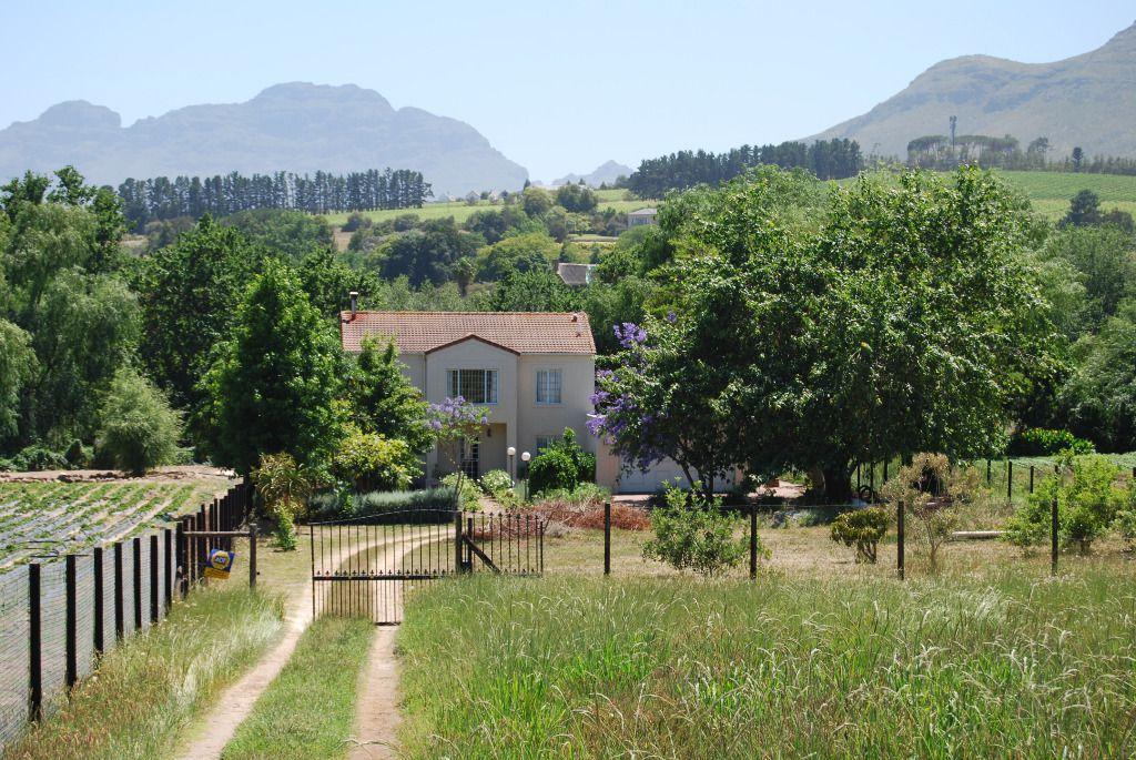 Stellenbosch Dreams: Shoot My House Farm Location Stellenbosch